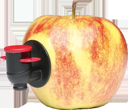 Obstbaumpflege Junge - Saft aus Ihrem Obst. Ein Service von Obstbaumpflege Junge.
